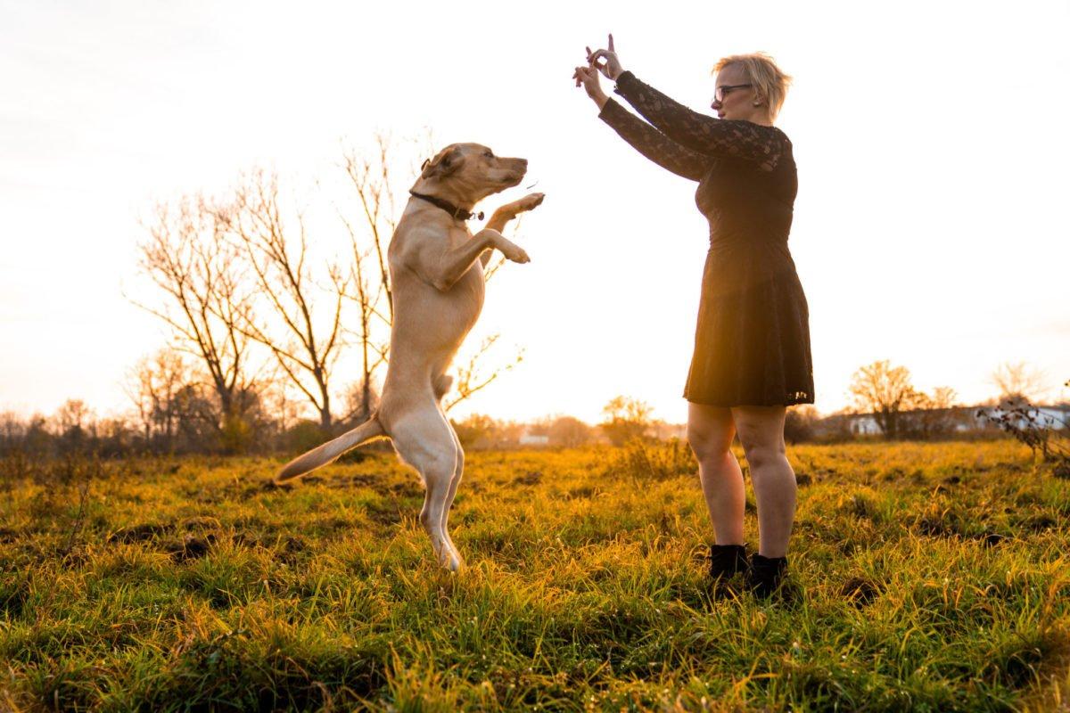 Paarshooting mit Hund. Männchen machen.